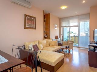 Skyline City Centre Apartment - Sveta Nedelja vacation rentals