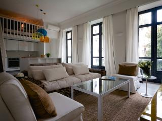 French elegance, 2 bed 3 bath, minutes from beach - Cannes vacation rentals
