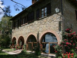 Villa with private pool - Monte san Savino - Monte San Savino vacation rentals