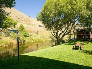 Creekside, one bedroom condo - 3 blocks from downtown Jackson - Jackson Hole Area vacation rentals