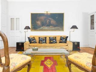 Splendid 3 bedrooms apartment in Avignon centre - Avignon vacation rentals