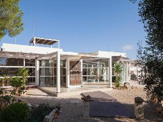 Villa Petrose - Pulsano vacation rentals
