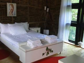 Romantic 1 bedroom Golets Condo with Internet Access - Golets vacation rentals