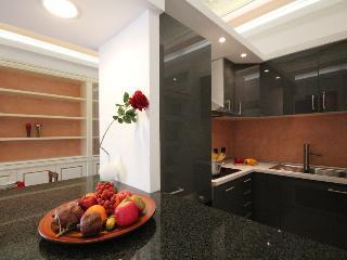 Amazing Apartment Como - Como vacation rentals