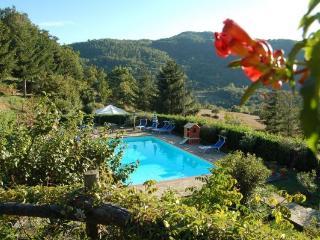 Perfect 10 bedroom Villa in Teverina di Cortona - Teverina di Cortona vacation rentals