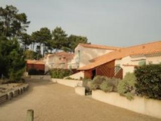 Mas de Vertmarines LS171 - St Jean de Monts - Saint-Urbain vacation rentals