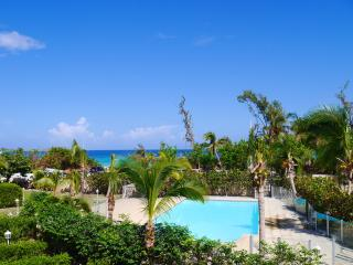 Sea view ocean front- Summer deal : car included - Orient Bay vacation rentals