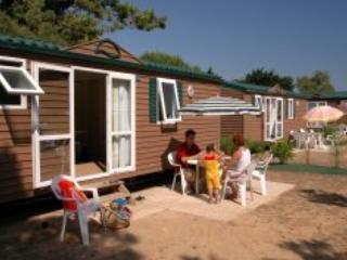 Tamarins Mobile Home 6p - Le Bois Plage - Ile de Re vacation rentals