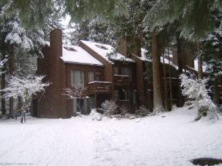 Snowater Condo #73- Sleeps 2 - Close to River Trails - Glacier vacation rentals