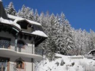 Le Cristal residence 37K/Z - Argentiere Vallee de CHAMONIX - Argentiere vacation rentals