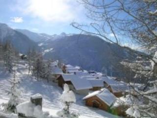 L'Oree des Cimes 2P4 - Peisey Vallandry PARADISKI - Peisey-Vallandry vacation rentals