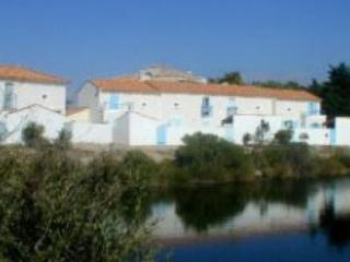 Maisons du Lac CBT - St Jean de Monts - Image 1 - Saint-Jean-de-Monts - rentals