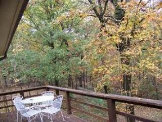 LINDSAY LANE 20 - Hot Springs Village vacation rentals