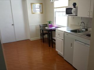 2 Bedroom apt with Private Entrance - Forest Hills vacation rentals
