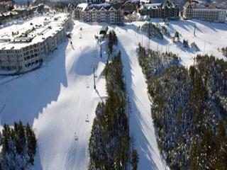 MOUNTAIN LODGE 207/255- Summer $140 night/$800 wk - Snowshoe vacation rentals