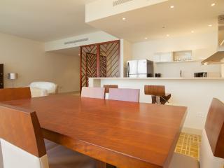 Modern 1 Bedroom Apartment in Avenida Balboa - Panama City vacation rentals