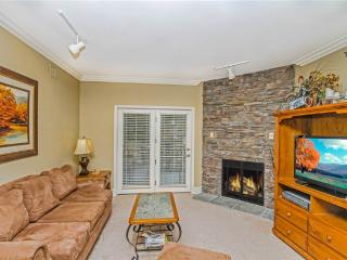 Nice Condo with Internet Access and Dishwasher - Gatlinburg vacation rentals