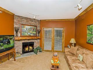 Baskins Creek 308 - Gatlinburg vacation rentals