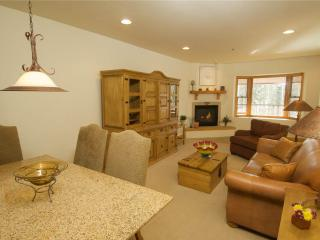 Nice 1 bedroom Mountain Village Condo with Internet Access - Mountain Village vacation rentals