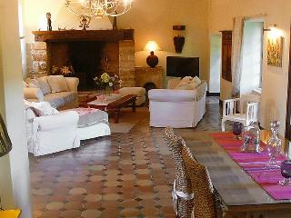 Private House with Pool in the Dordogne - Maison Plazac - Rouffignac vacation rentals