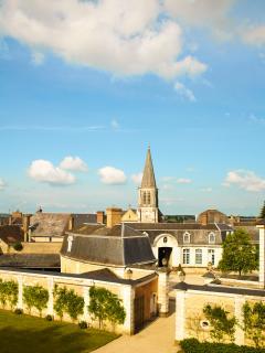 Luxury Chateau in the Loire Valley - Chateau de la Loire - Conflans-sur-Anille vacation rentals