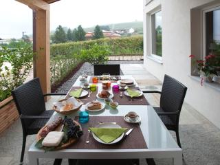 relax in the middle of the vineyard - Barolo vacation rentals