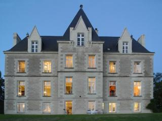 Chateau Vienne holiday vacation chateau large villa rental france, loire - Poitiers vacation rentals