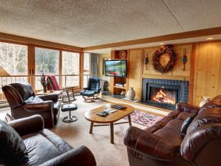 Economical, Spacious & Perfect for families - Keystone vacation rentals