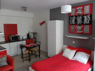 Appart In Pau - ESPALUNGUE 1 - Pau vacation rentals