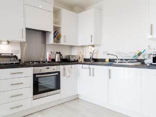 Stylish Cambridge 2 BR Apartment - Cambridge vacation rentals