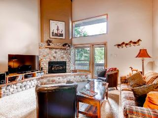 Nice Condo with Dishwasher and Telephone - Steamboat Springs vacation rentals