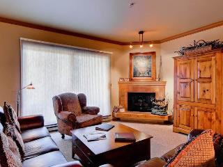 Snow Flower 105 - Steamboat Springs vacation rentals