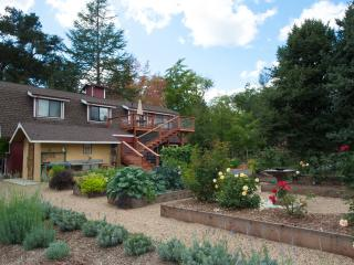Charming Apartment in Dry Creek Valley, Healdsburg - Healdsburg vacation rentals