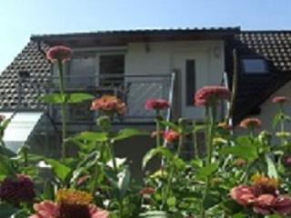 Ferienwohnung Schauenburgblick - Familie Schwenk - Oberkirch vacation rentals