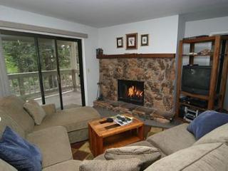 Tahoe Sierra Pines 14 - Nevada vacation rentals