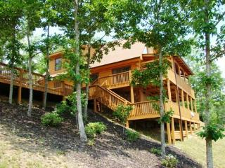Sky Cove Retreat – Gorgeous Log Cabin with Extraordinary View. Minutes from Restaurants, Shopping and the Great Smoky Mountain Railroad - Bryson City vacation rentals