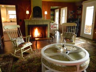 Cozy Fireplace | Views | Dogs Welcome - Freedom vacation rentals