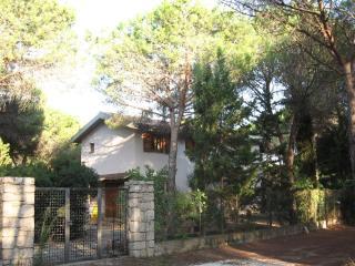 Villa Alma - Cala Liberotto vacation rentals