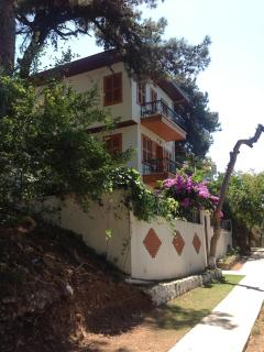 BUYUKADA - ISTANBUL -TURKEY  /  quiet , in the nature of your own - Buyukada vacation rentals