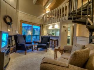 Rockies 2235 - Steamboat Springs vacation rentals
