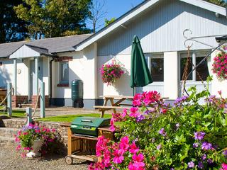 Heron Cottage - Poughill vacation rentals