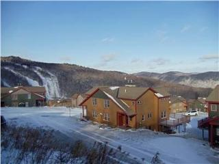 Top Ridge-34B - Killington Area vacation rentals