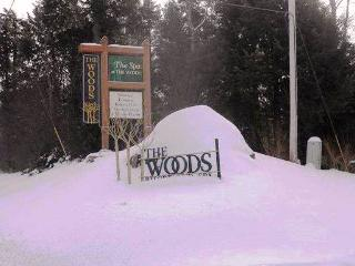 The Woods Resort & Spa Townhouse E12 - Killington Area vacation rentals