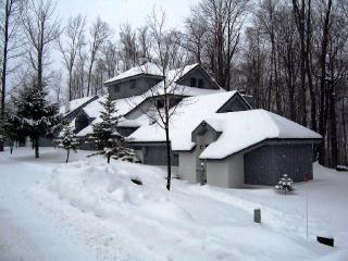 The Woods Resort & Spa-WV43 - Killington vacation rentals