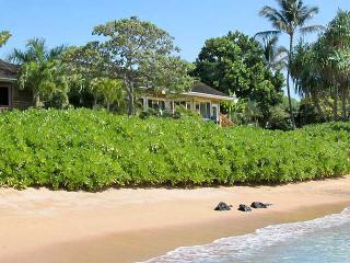 Hale Moana - Koloa vacation rentals