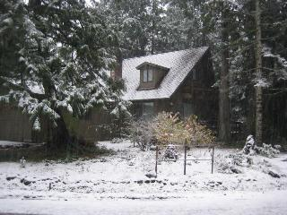 Alpine Rendezvous - Mount Hood vacation rentals