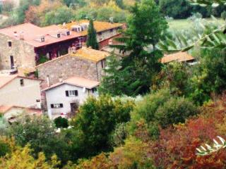 green holidays Lake Trasimeno, Tuscany and Umbria - Sant'Arcangelo vacation rentals