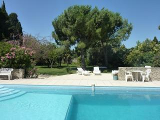 MAS DE LA RIVIERE, Old Farmhouse - Villelongue-de-la-Salanque vacation rentals