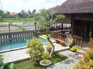 Surya House, NEW 2 bdrm, Pool, Rice Fields - Ubud vacation rentals