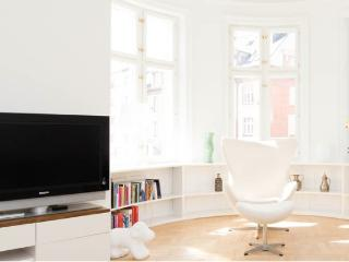 Big, beautiful apartment in Central Copenhagen - Copenhagen vacation rentals